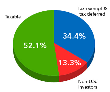 2010 Tax status of U.S. equity holdings
