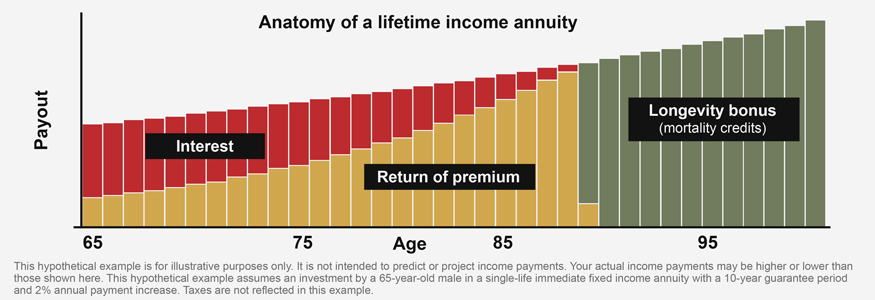 Anatomy of a lifetime income annuity